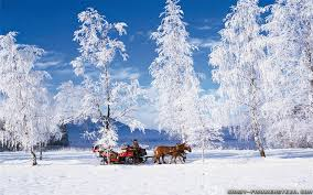images_winter